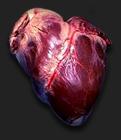Onaga's Heart